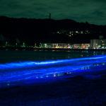 逗子海岸ライトアップ