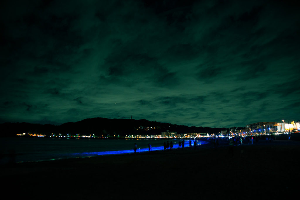 night wave